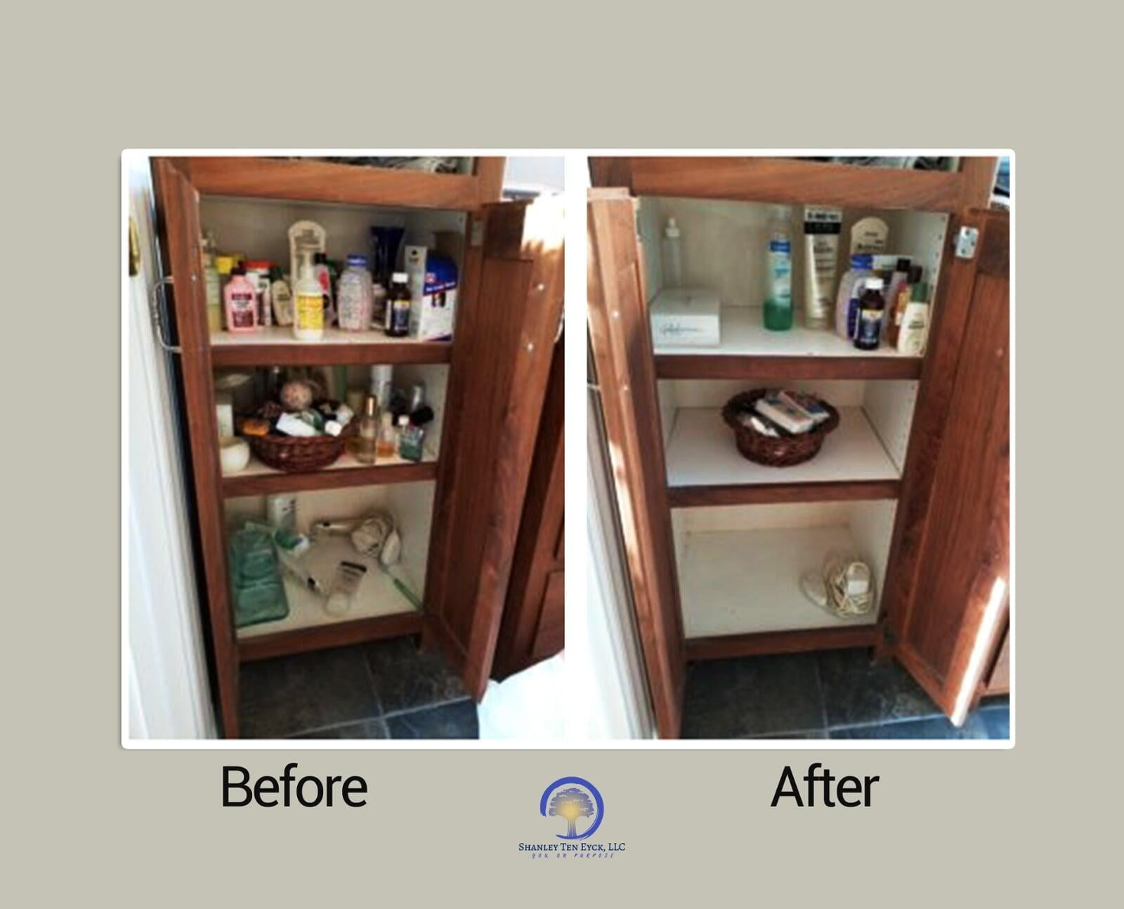Bathroom Guest Cabinet